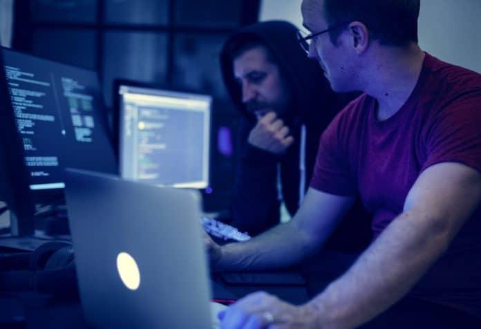 Software Developer Job Description